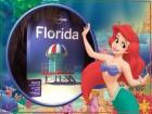 Florida vou
